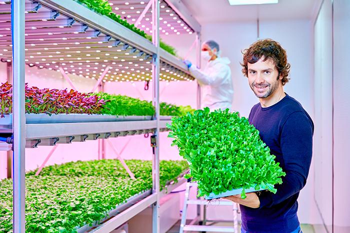 昕诺飞为欧洲最大的垂直农场及其他五处设施提供植物LED照明