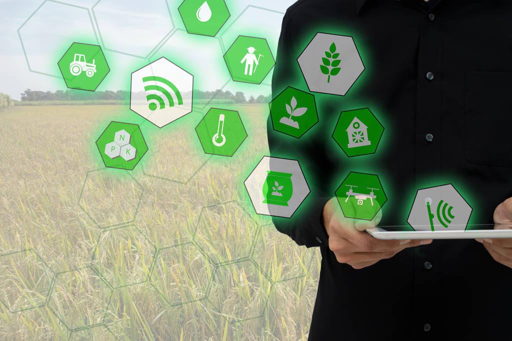 物联网与人工智能在智慧农业中的应用