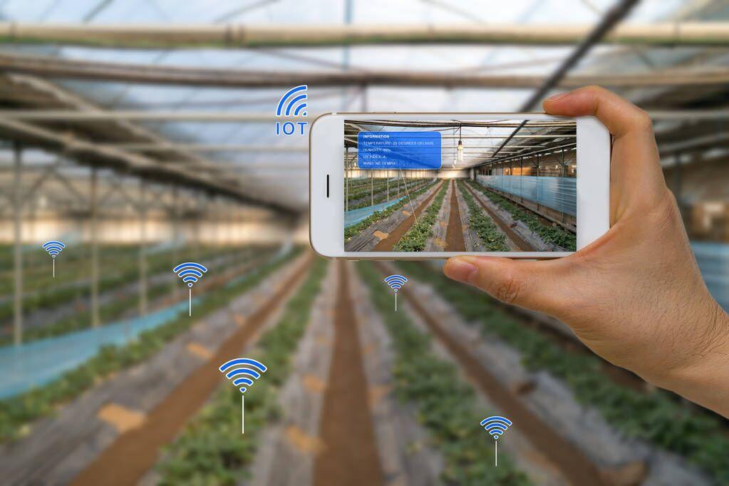 现代化农业的物联网解决方案